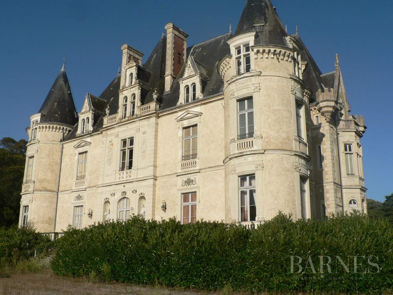 La Ferté-Bernard  - Château 30 Pièces - picture 2