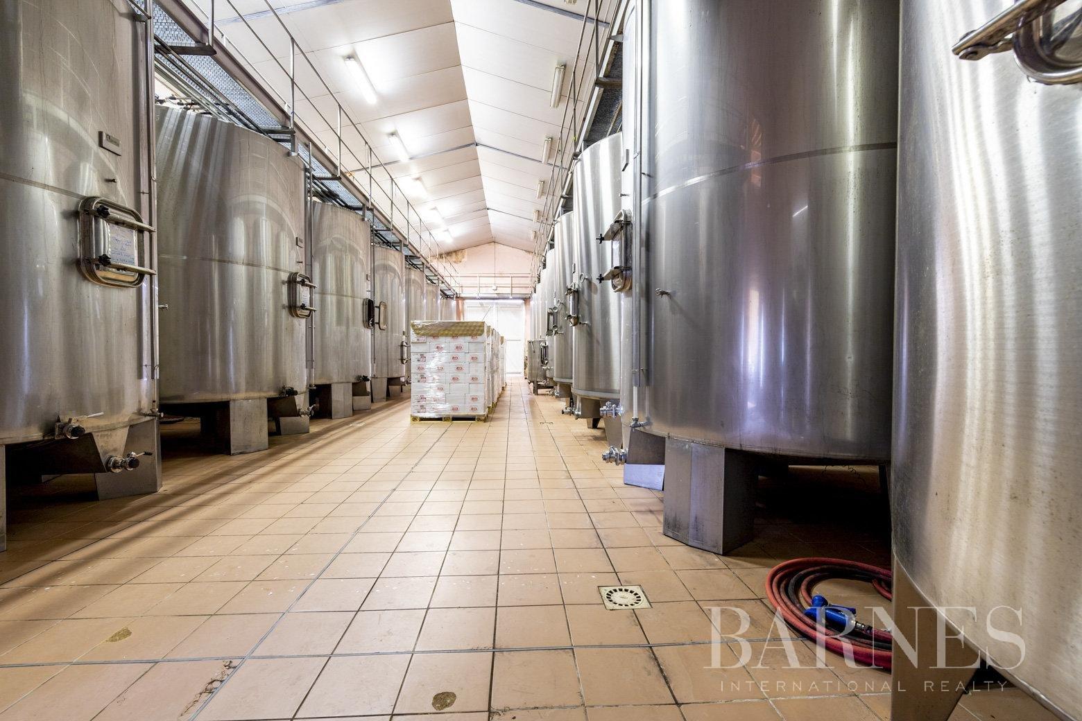 Bordeaux  - Propriété viticole 13 Pièces - picture 6