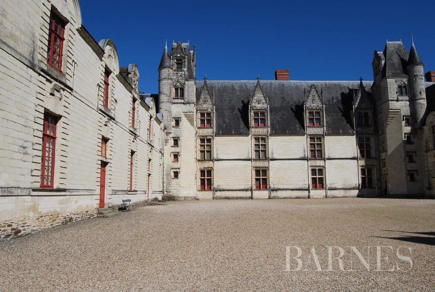 Nantes  - Château  - picture 2