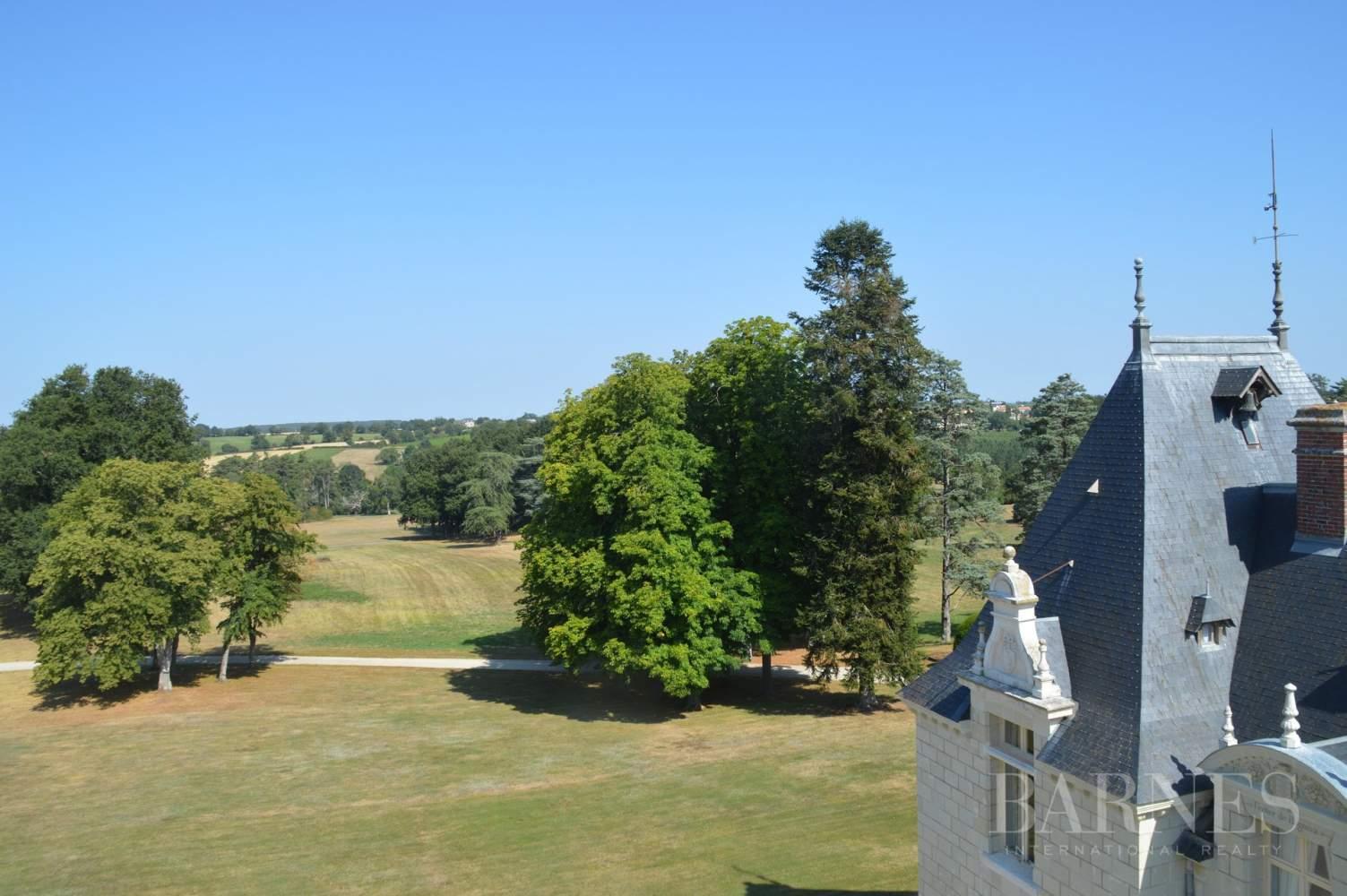 Doué-en-Anjou  - Château 30 Pièces - picture 4
