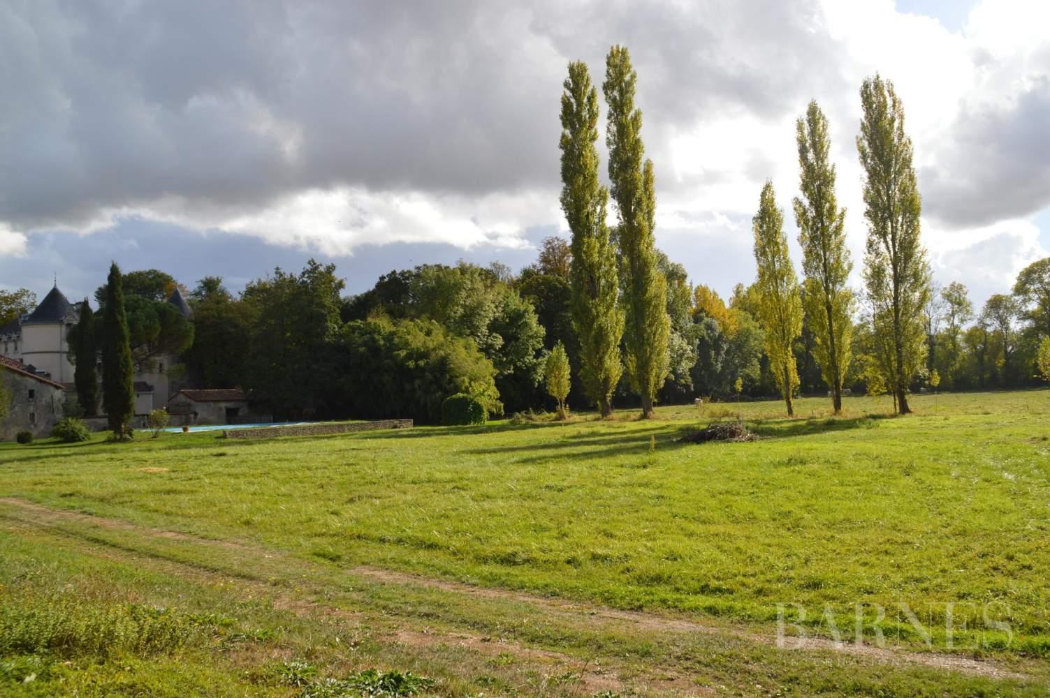 La Châtaigneraie  - Château 15 Pièces 9 Chambres - picture 15