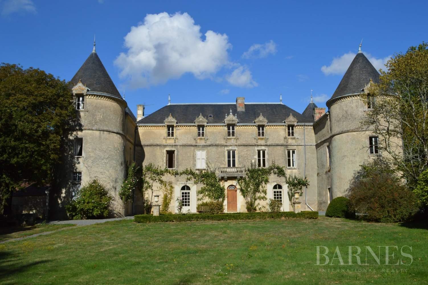 La Châtaigneraie  - Château 15 Pièces 9 Chambres - picture 3