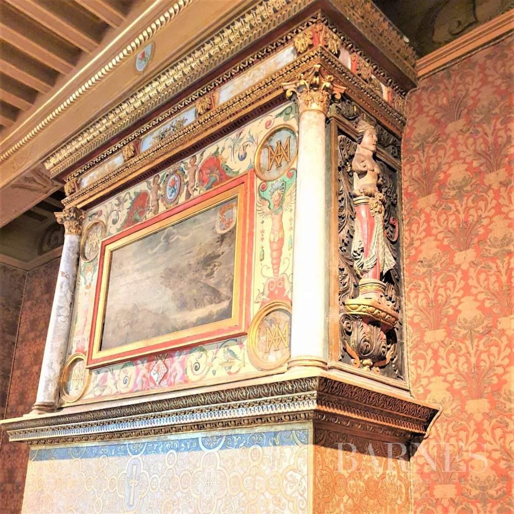 Rennes  - Château 15 Pièces 8 Chambres - picture 11