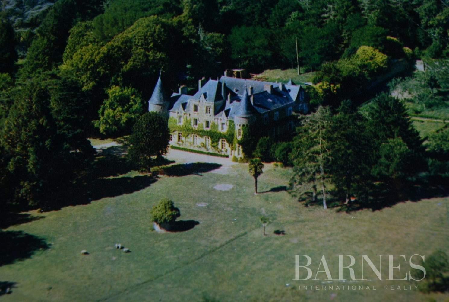 Missillac  - Château 20 Pièces 12 Chambres - picture 1