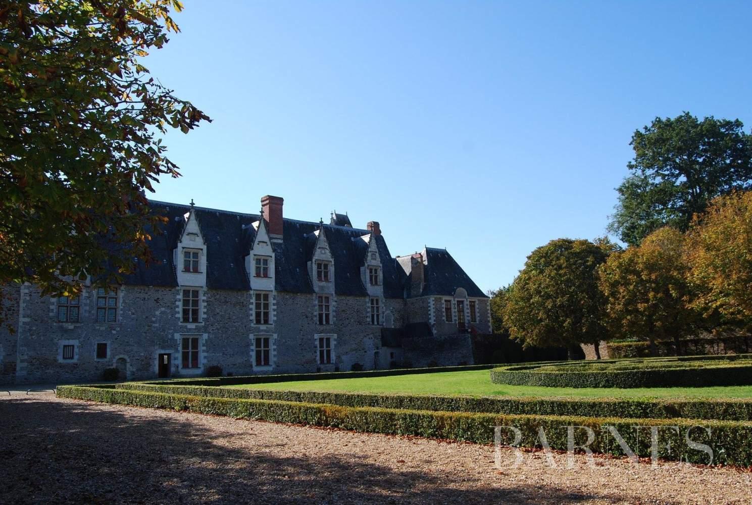 Nantes  - Château  - picture 10