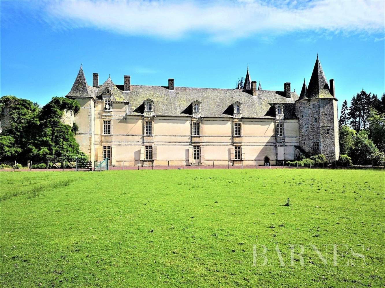 Rennes  - Château 15 Pièces 8 Chambres - picture 1