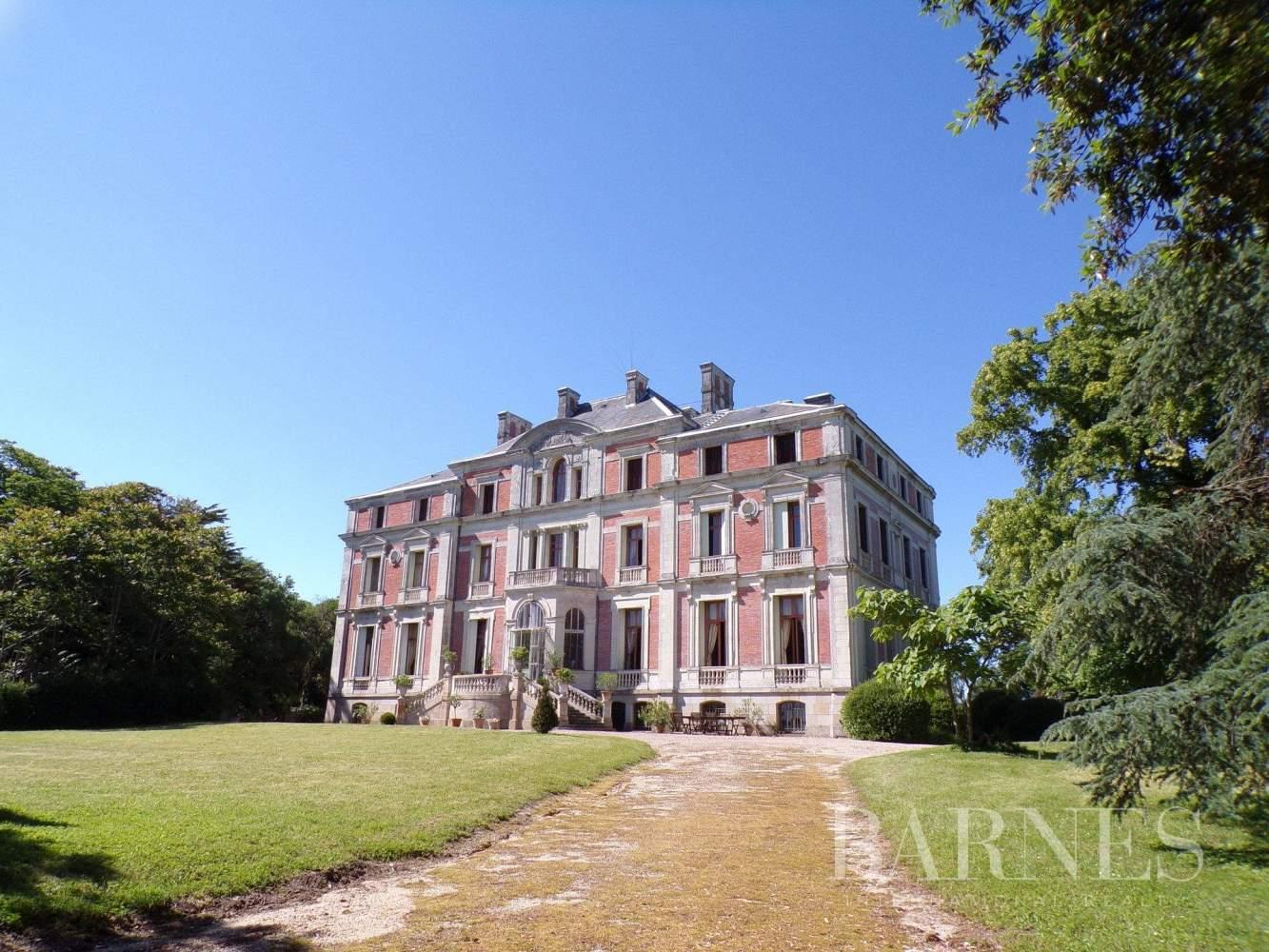 Ancenis  - Château 30 Pièces 6 Chambres - picture 1