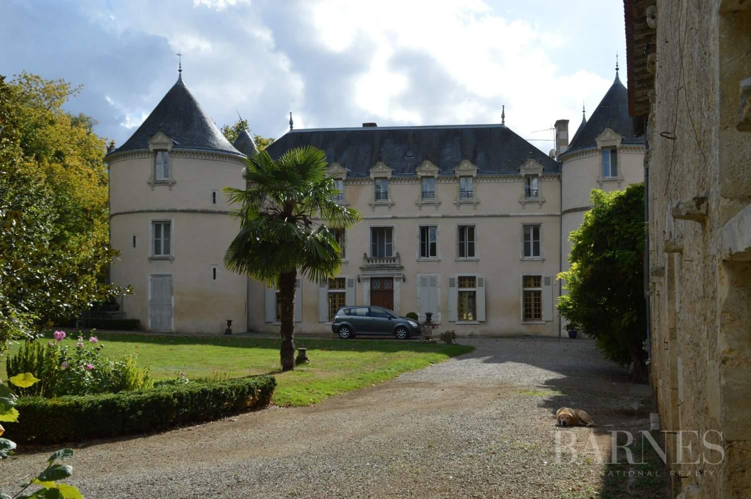 La Châtaigneraie  - Château 15 Pièces 9 Chambres - picture 4