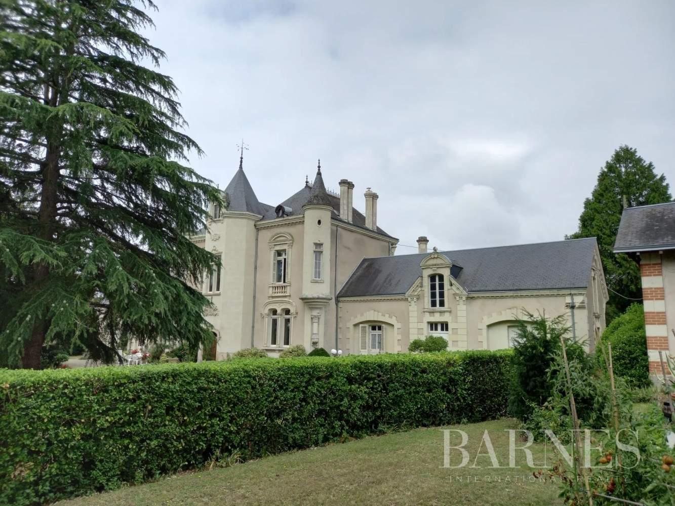 Thouars  - Château 12 Pièces 7 Chambres - picture 8