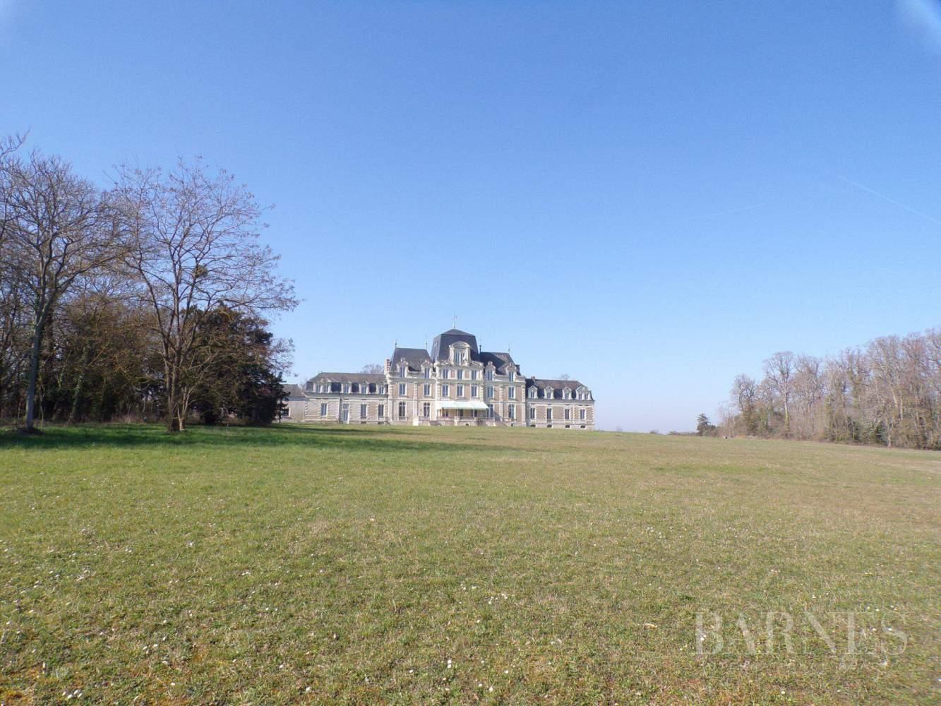 Angers  - Château 30 Pièces - picture 8