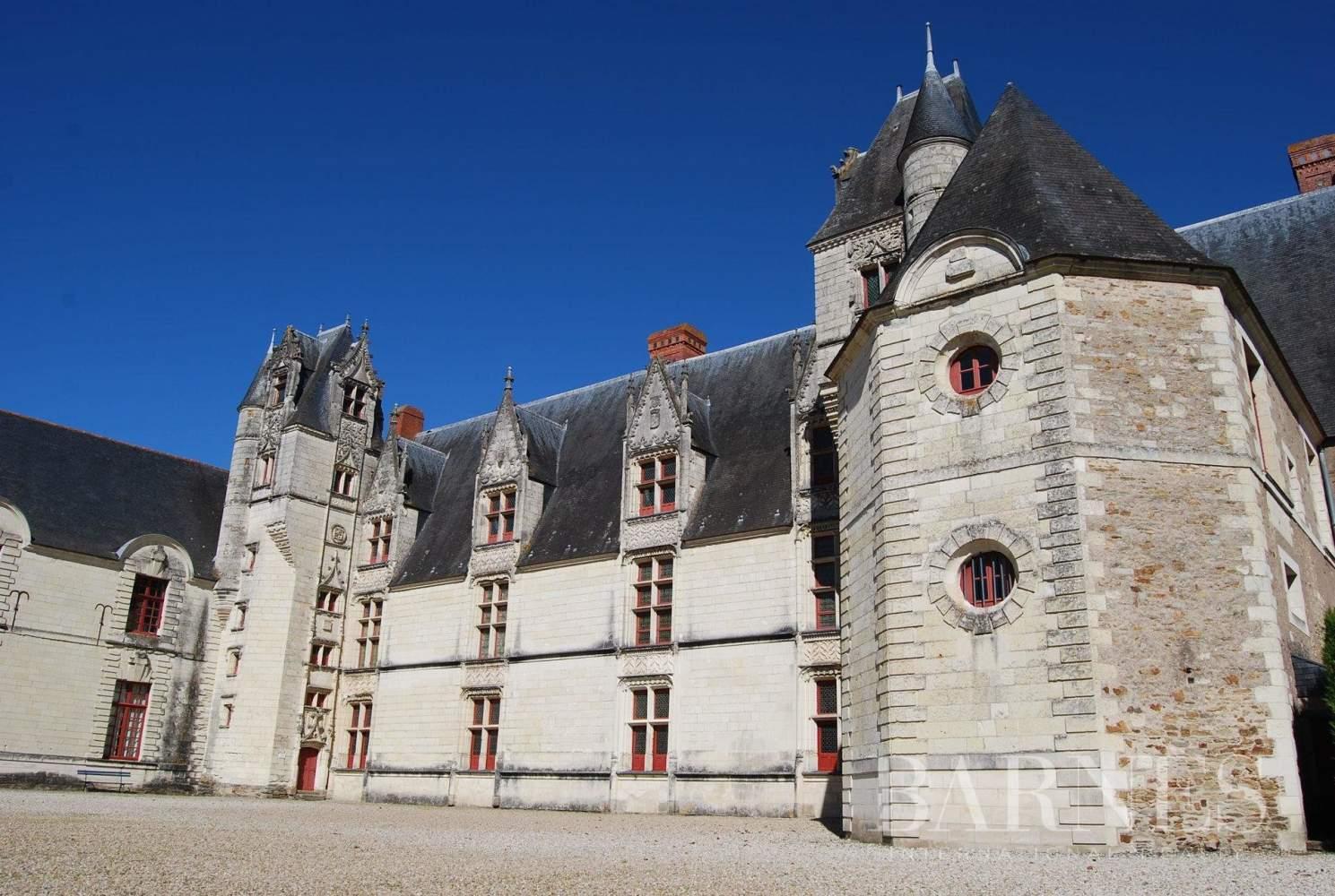 Nantes  - Château  - picture 7