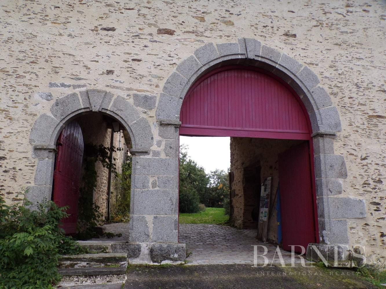 La Châtaigneraie  - Manoir 11 Pièces - picture 2