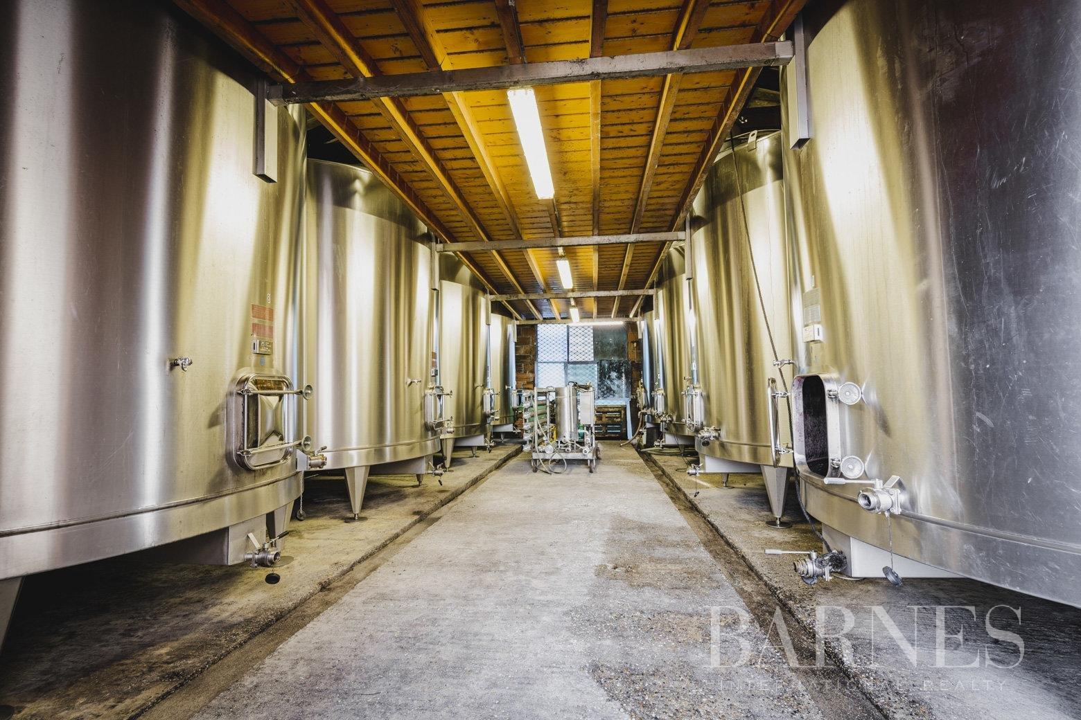 Bordeaux  - Propriété viticole 1 Pièce - picture 4