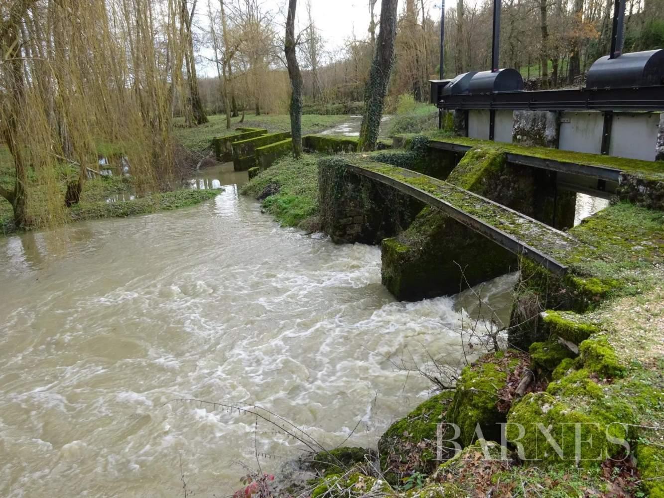 Châtillon-sur-Chalaronne  - Moulin 11 Pièces 6 Chambres - picture 15