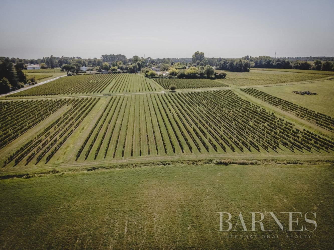 Bordeaux  - Propriété viticole 8 Pièces - picture 5
