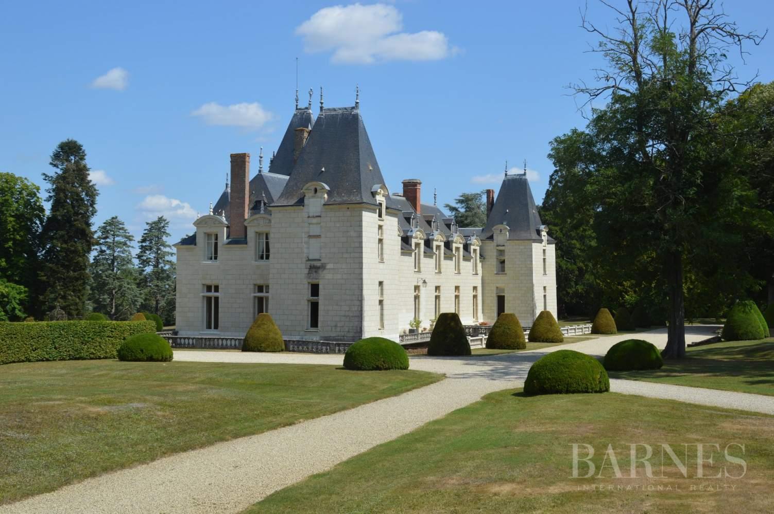Doué-en-Anjou  - Château 30 Pièces - picture 7