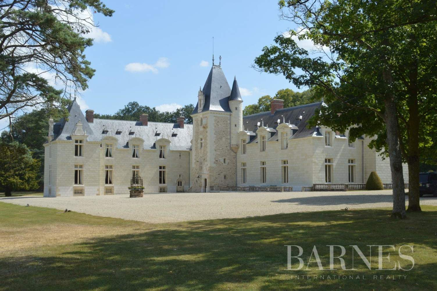 Doué-en-Anjou  - Château 30 Pièces - picture 1