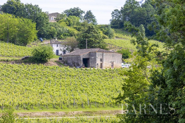 Bordeaux  - Propriété viticole 13 Pièces - picture 3