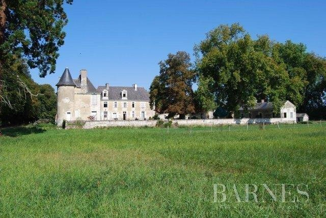 Châtellerault  - Château 18 Pièces - picture 2