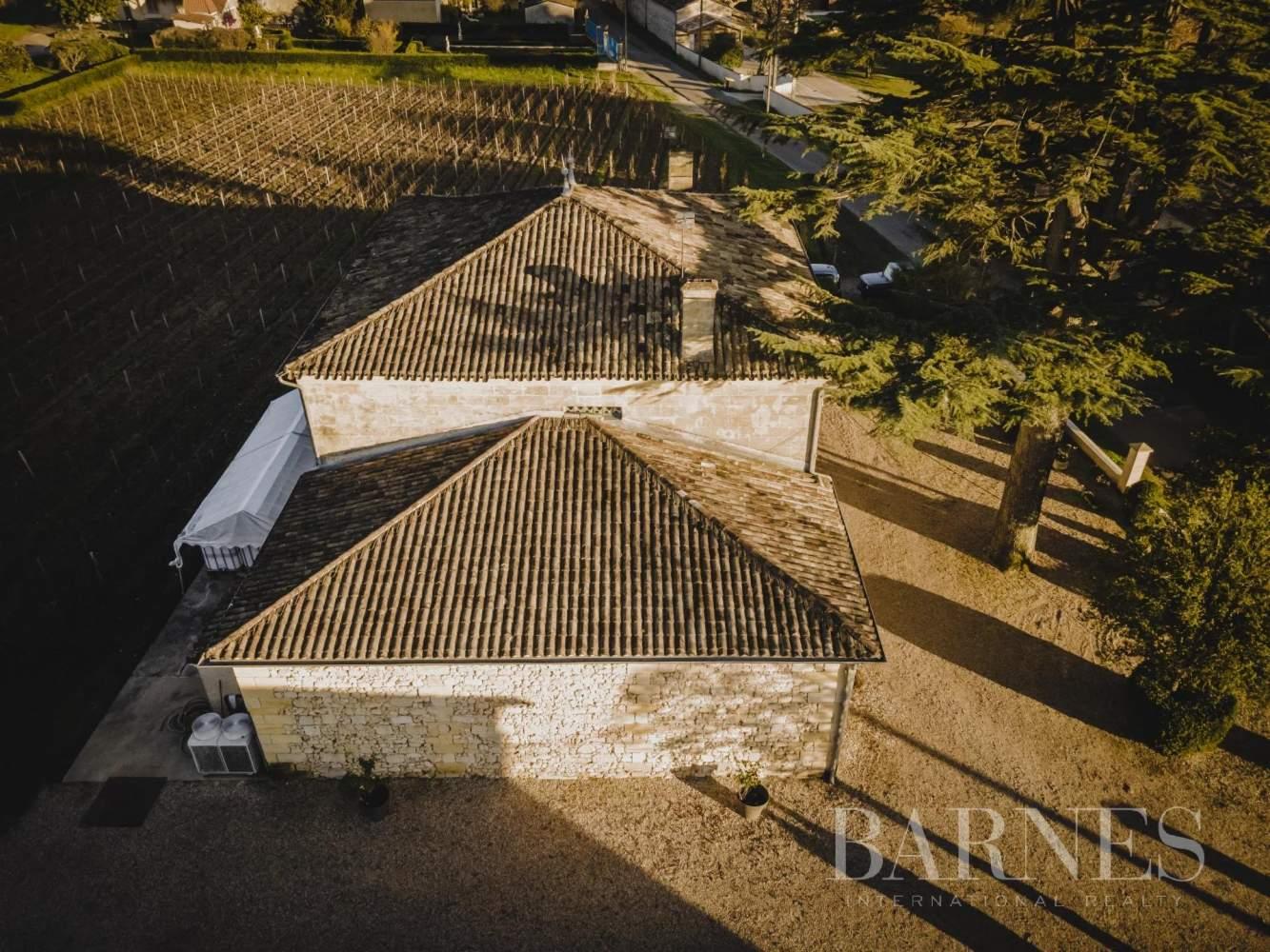 Saint-Émilion  - Propriété viticole 7 Pièces - picture 2