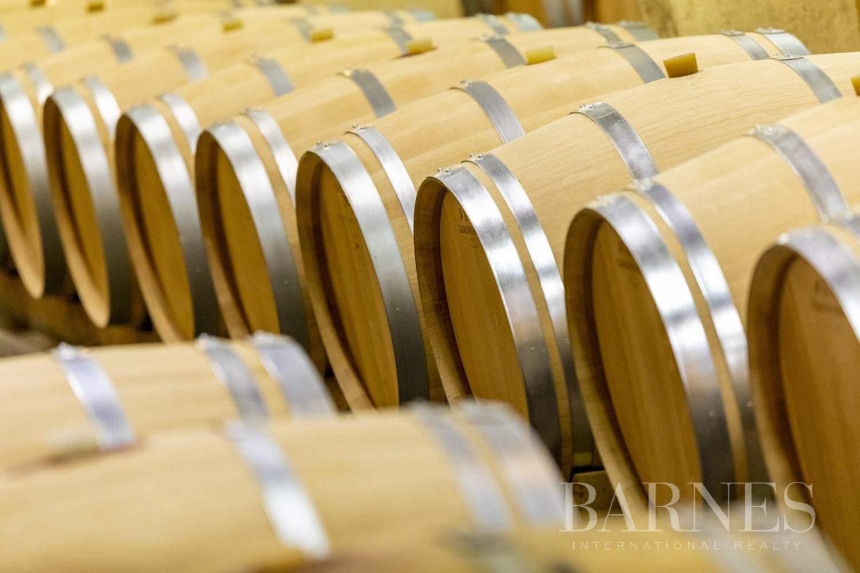 Bordeaux  - Propriété viticole 13 Pièces - picture 5