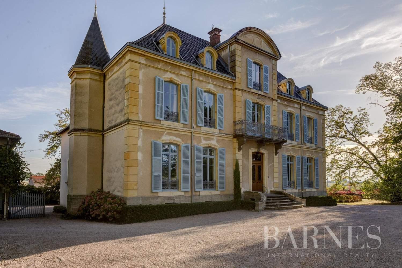 La Pacaudière  - Château 16 Pièces 10 Chambres - picture 1
