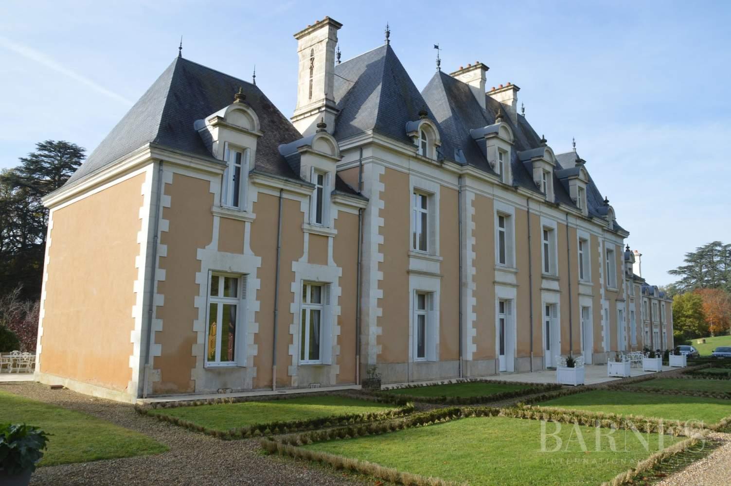 Poitiers  - Château 22 Pièces - picture 4