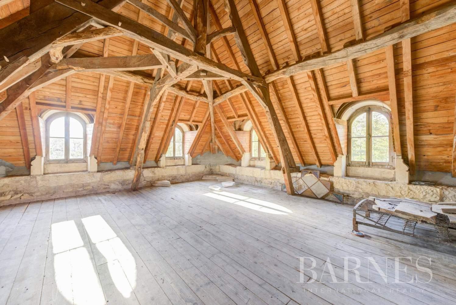 La Pacaudière  - Château 16 Pièces 10 Chambres - picture 10