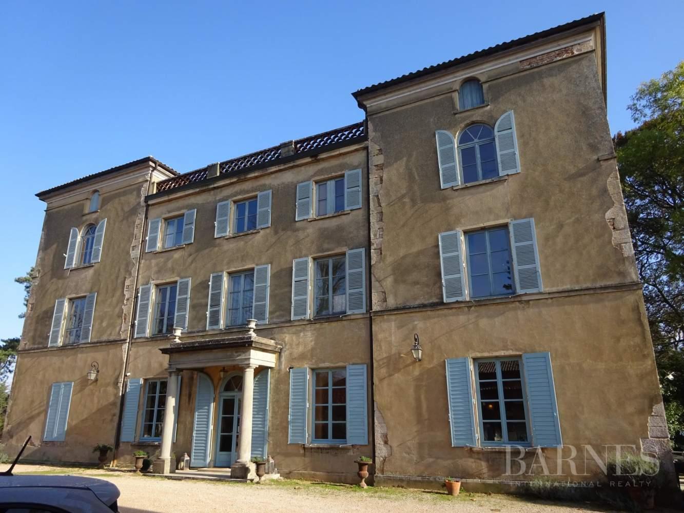 Mâcon  - Château 15 Pièces 9 Chambres - picture 3