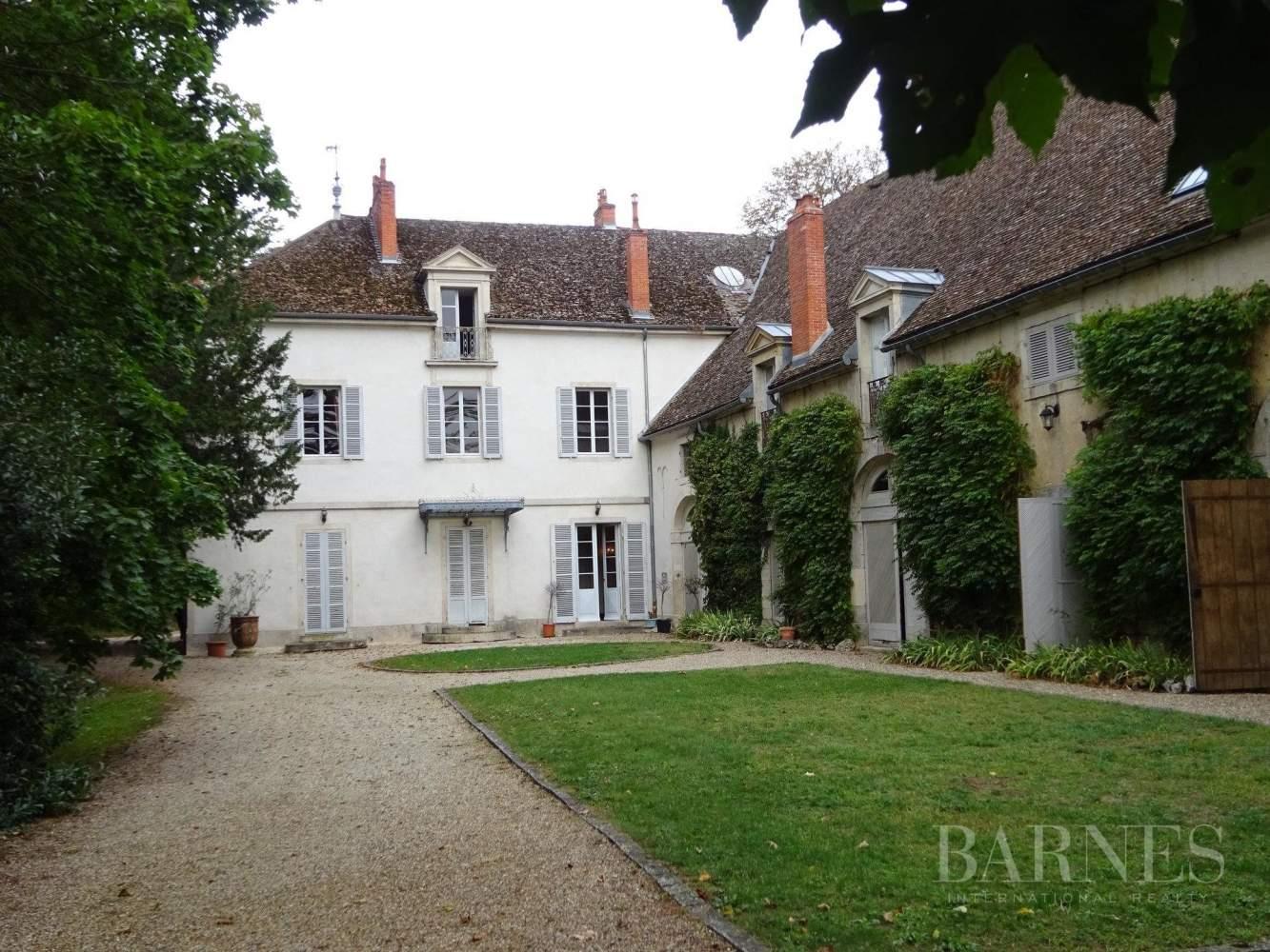 Beaune  - Château 22 Pièces 16 Chambres - picture 4