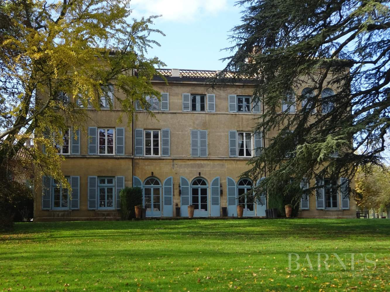 Mâcon  - Château 15 Pièces 9 Chambres - picture 1