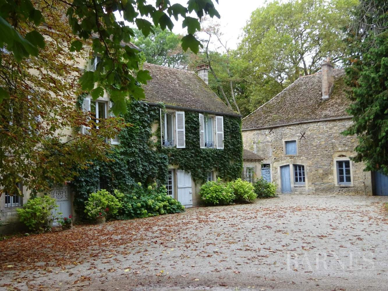 Beaune  - Château 22 Pièces 16 Chambres - picture 5