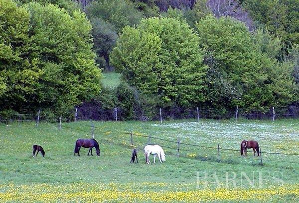 Courtenay  - Domaine équestre 8 Pièces - picture 4