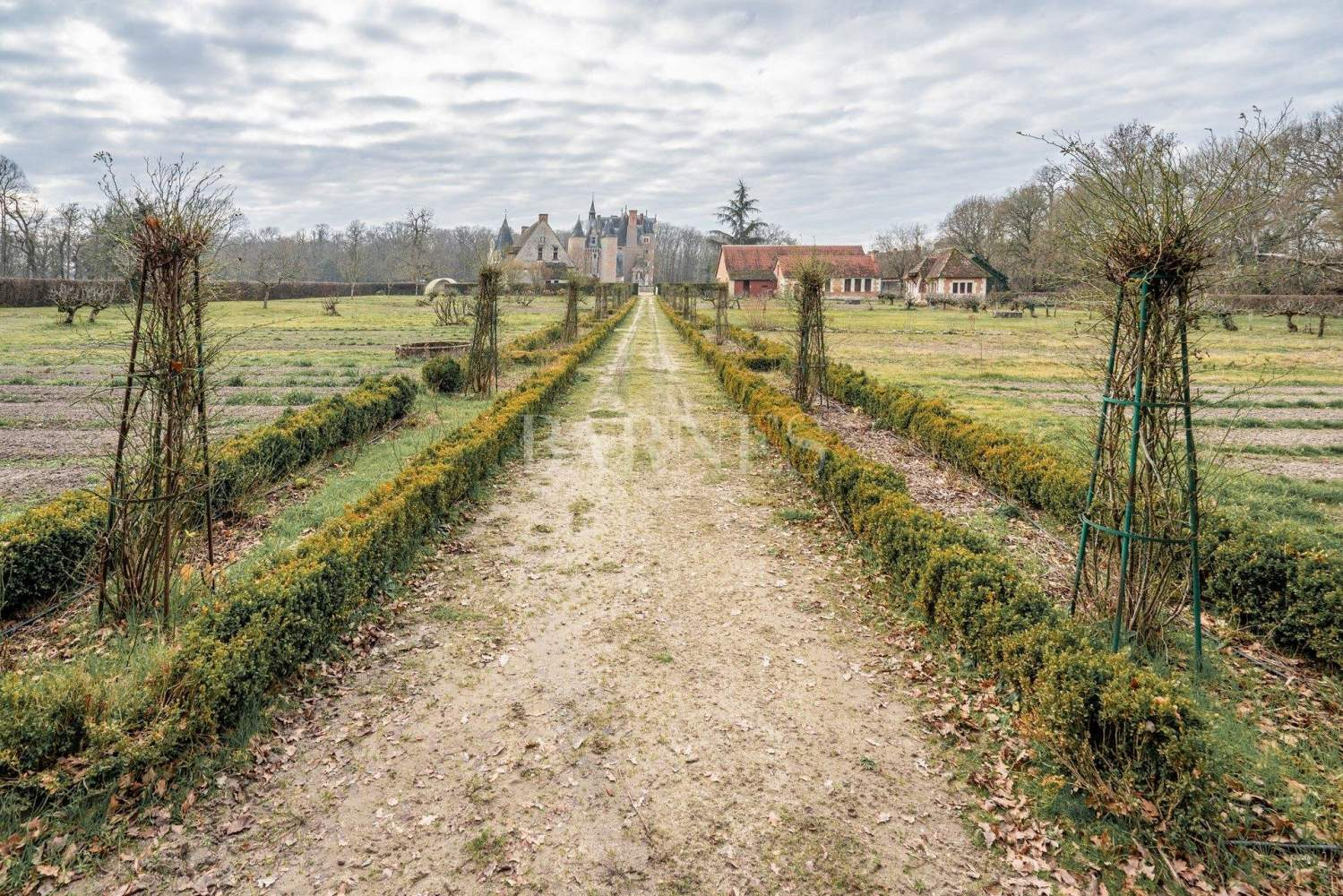 Romorantin-Lanthenay  - Château  - picture 16