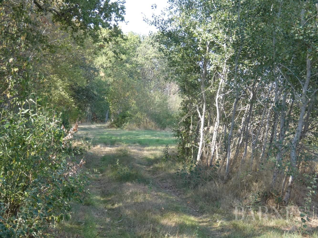 GIEN  - Domaine de chasse 10 Pièces - picture 2