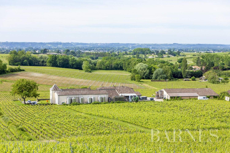 Bordeaux  - Propriété viticole 13 Pièces - picture 2