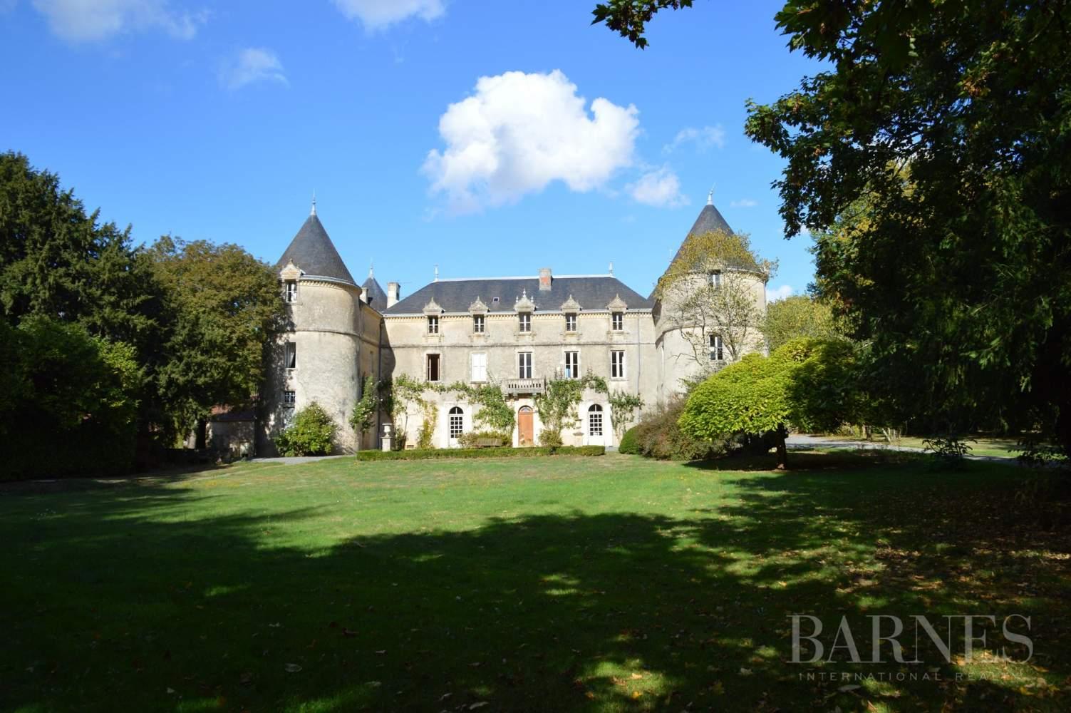 La Châtaigneraie  - Château 15 Pièces 9 Chambres - picture 1