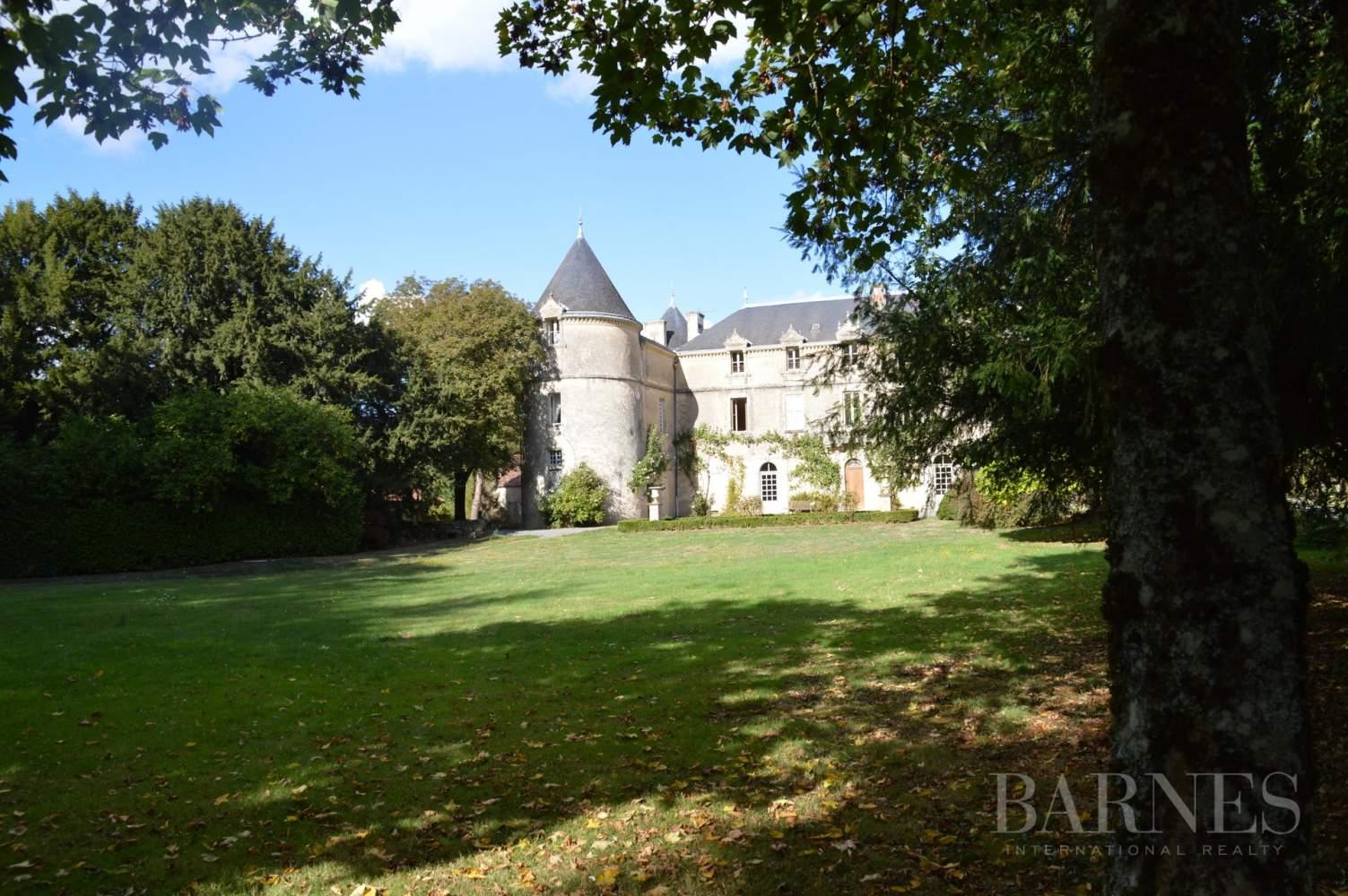 La Châtaigneraie  - Château 15 Pièces 9 Chambres - picture 5