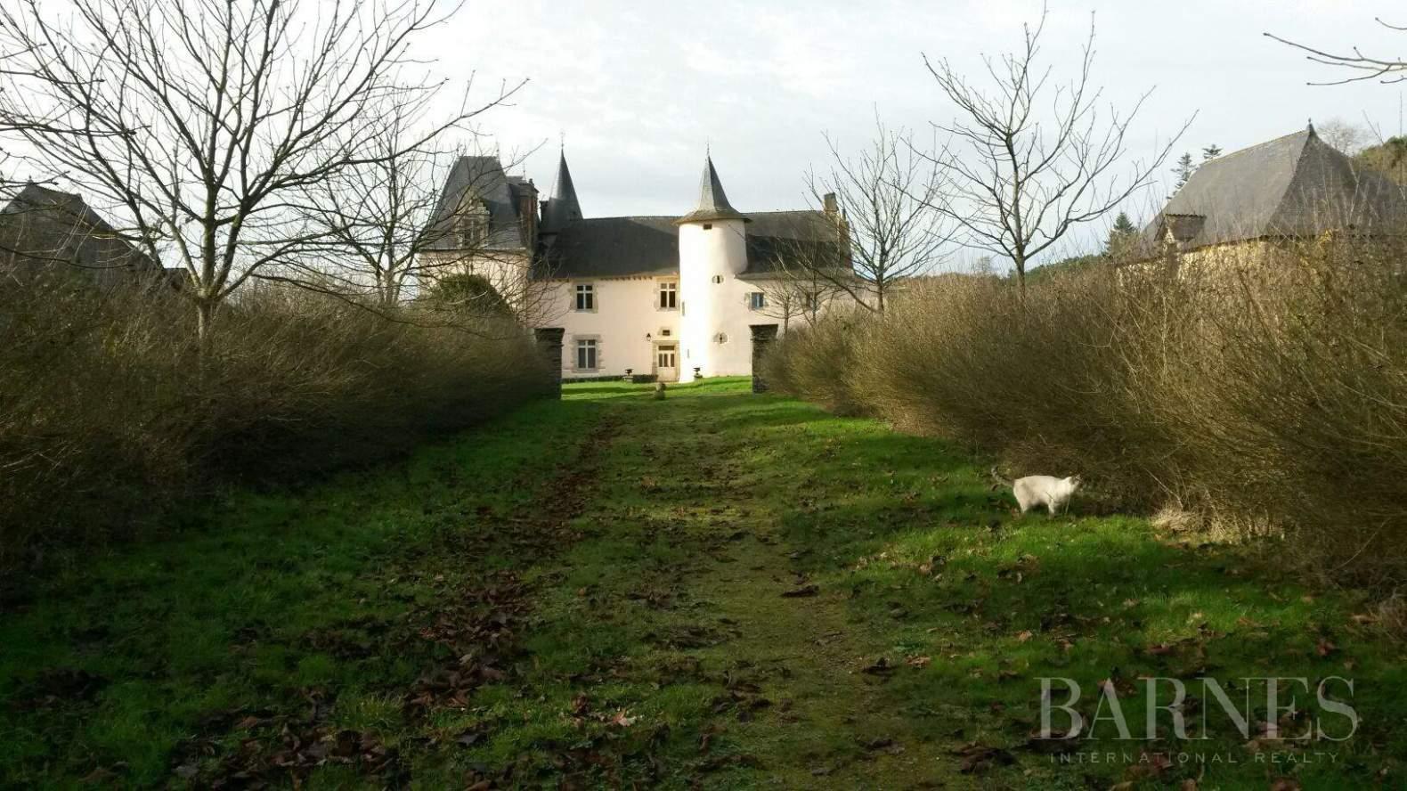 Vannes  - Château 10 Pièces - picture 8