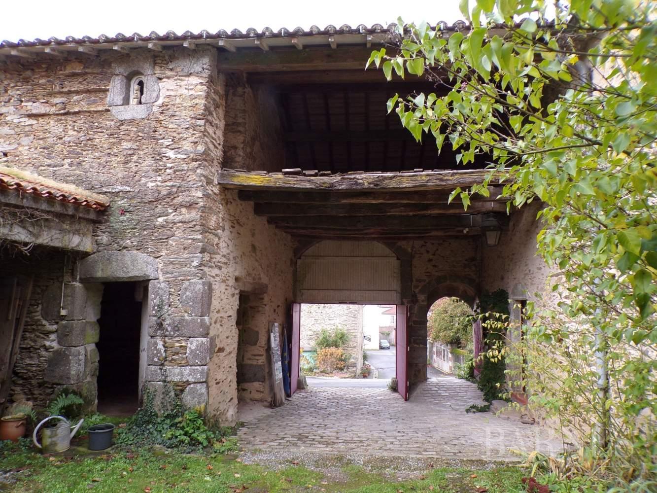 La Châtaigneraie  - Manoir 11 Pièces - picture 5