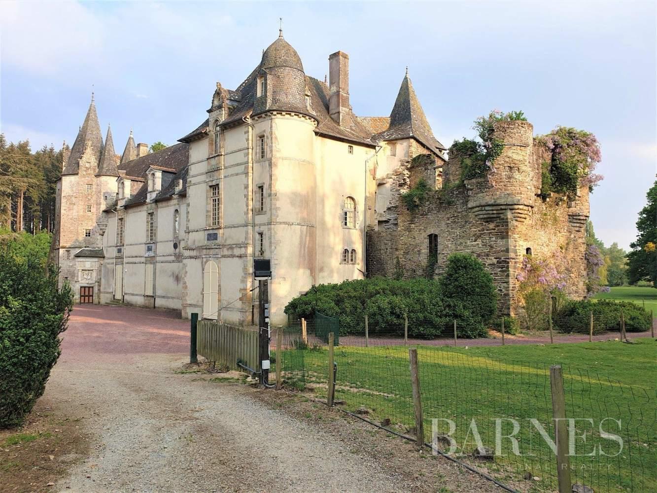 Rennes  - Château 15 Pièces 8 Chambres - picture 2