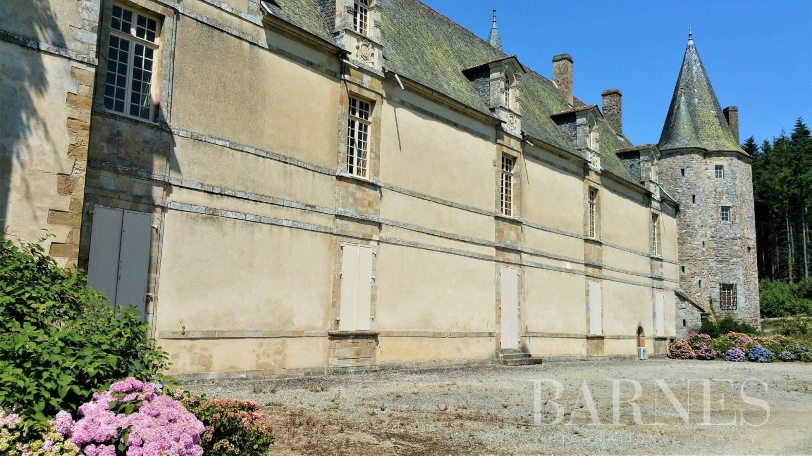 Rennes  - Château 15 Pièces 8 Chambres - picture 3