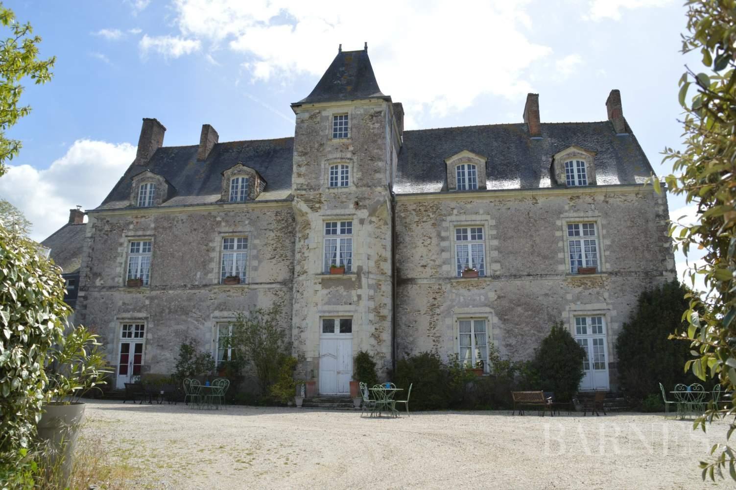 Nantes  - Château 15 Pièces 9 Chambres - picture 3