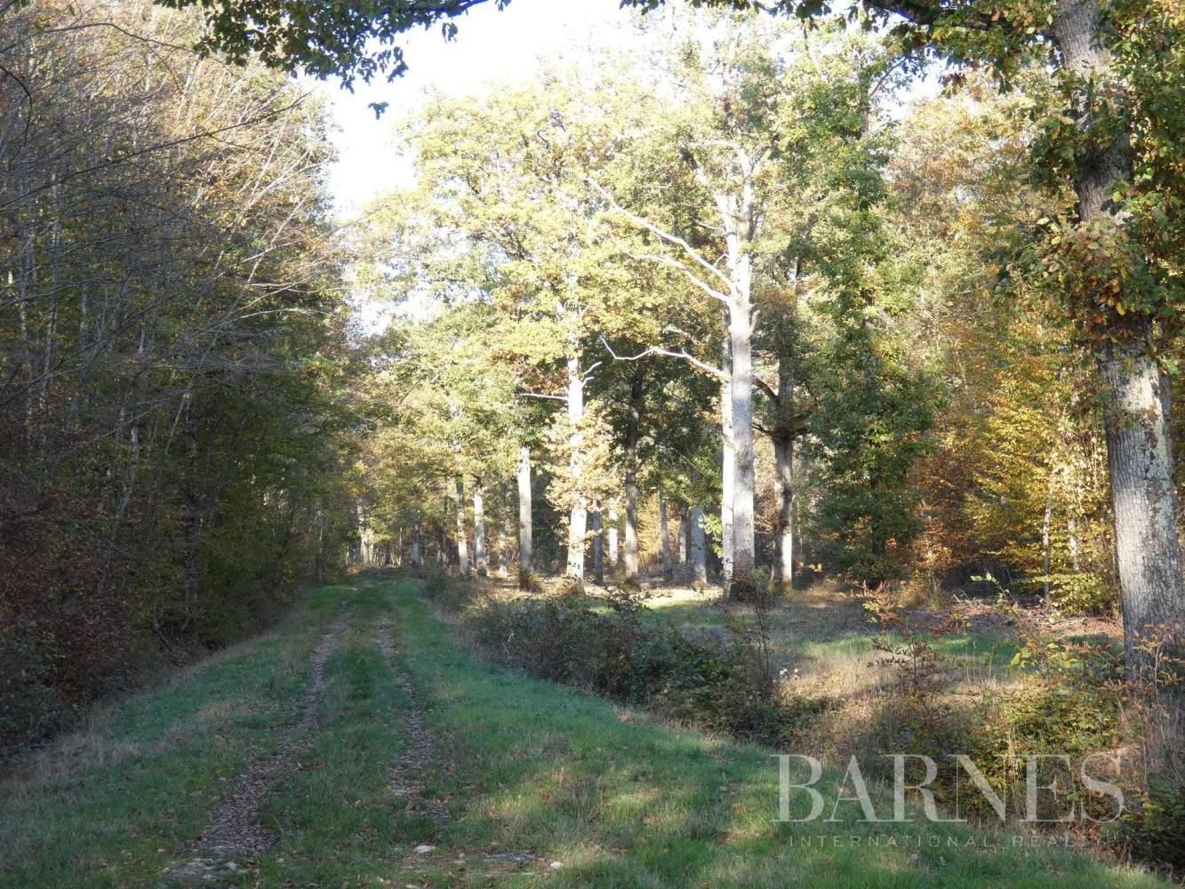 Montargis  - Domaine de chasse 40 Pièces - picture 8