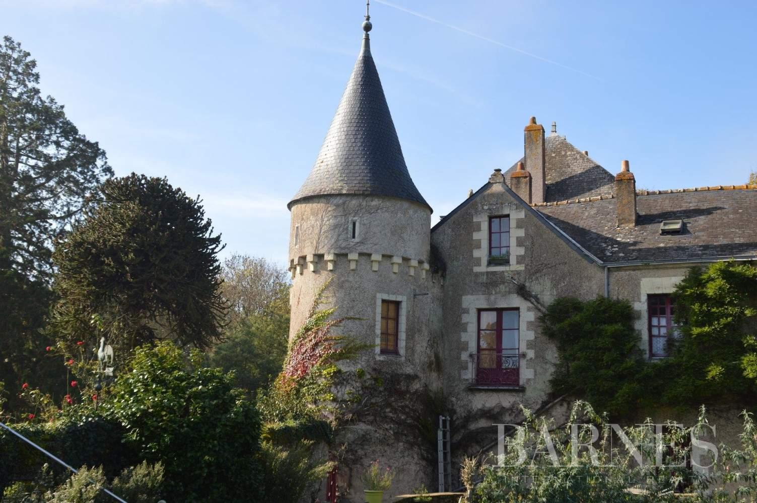 Missillac  - Château 20 Pièces 12 Chambres - picture 8