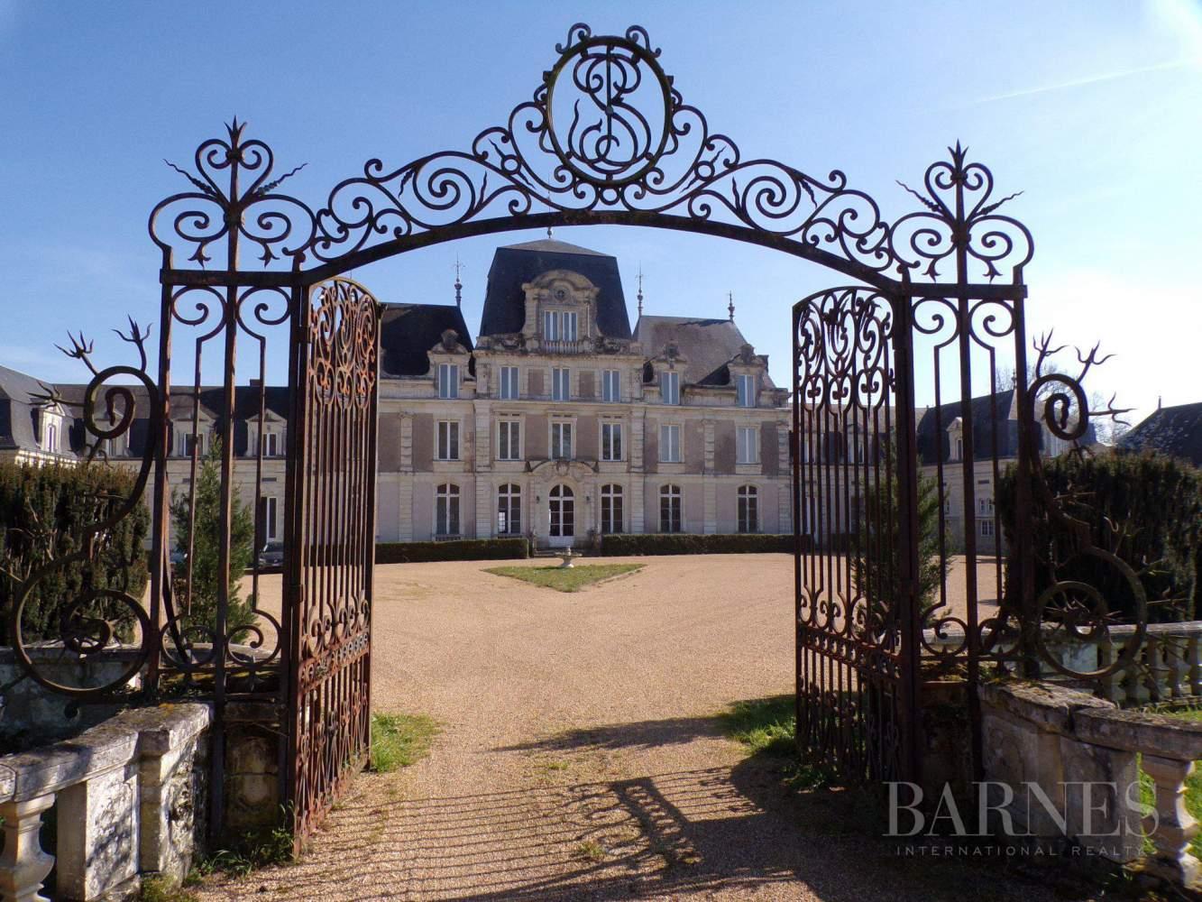 Angers  - Château 30 Pièces - picture 2