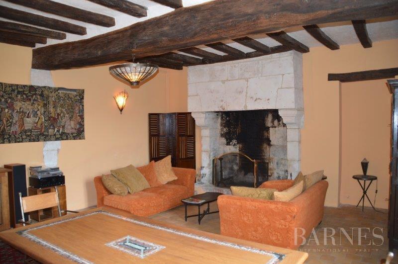 Thouars  - Señorío 15 Cuartos 10 Habitaciones - picture 11