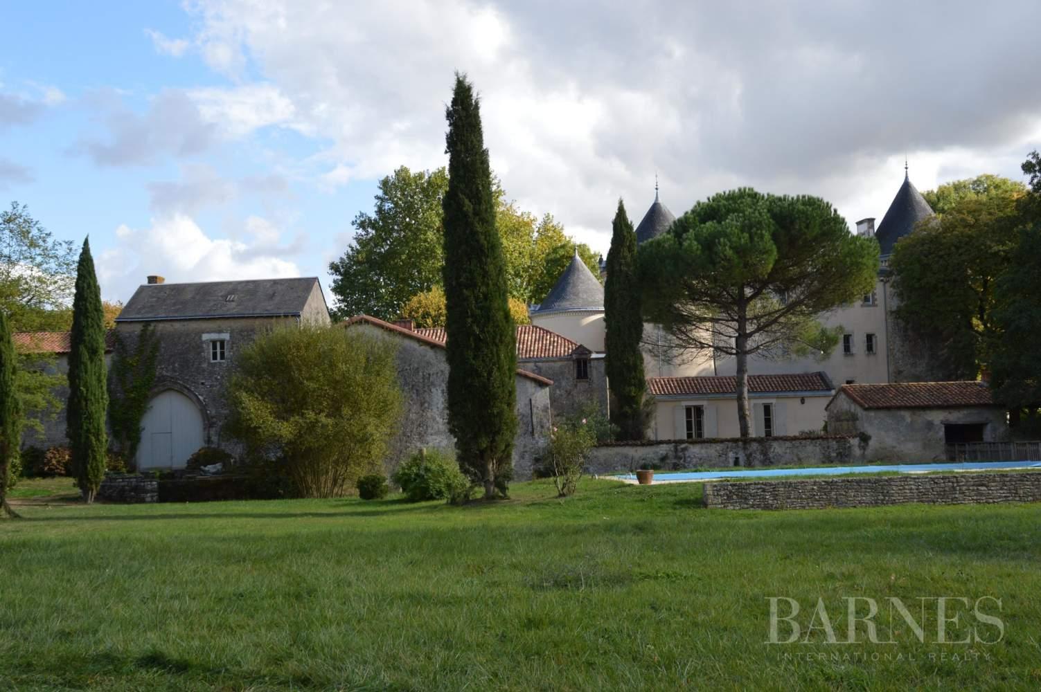 La Châtaigneraie  - Château 15 Pièces 9 Chambres - picture 12