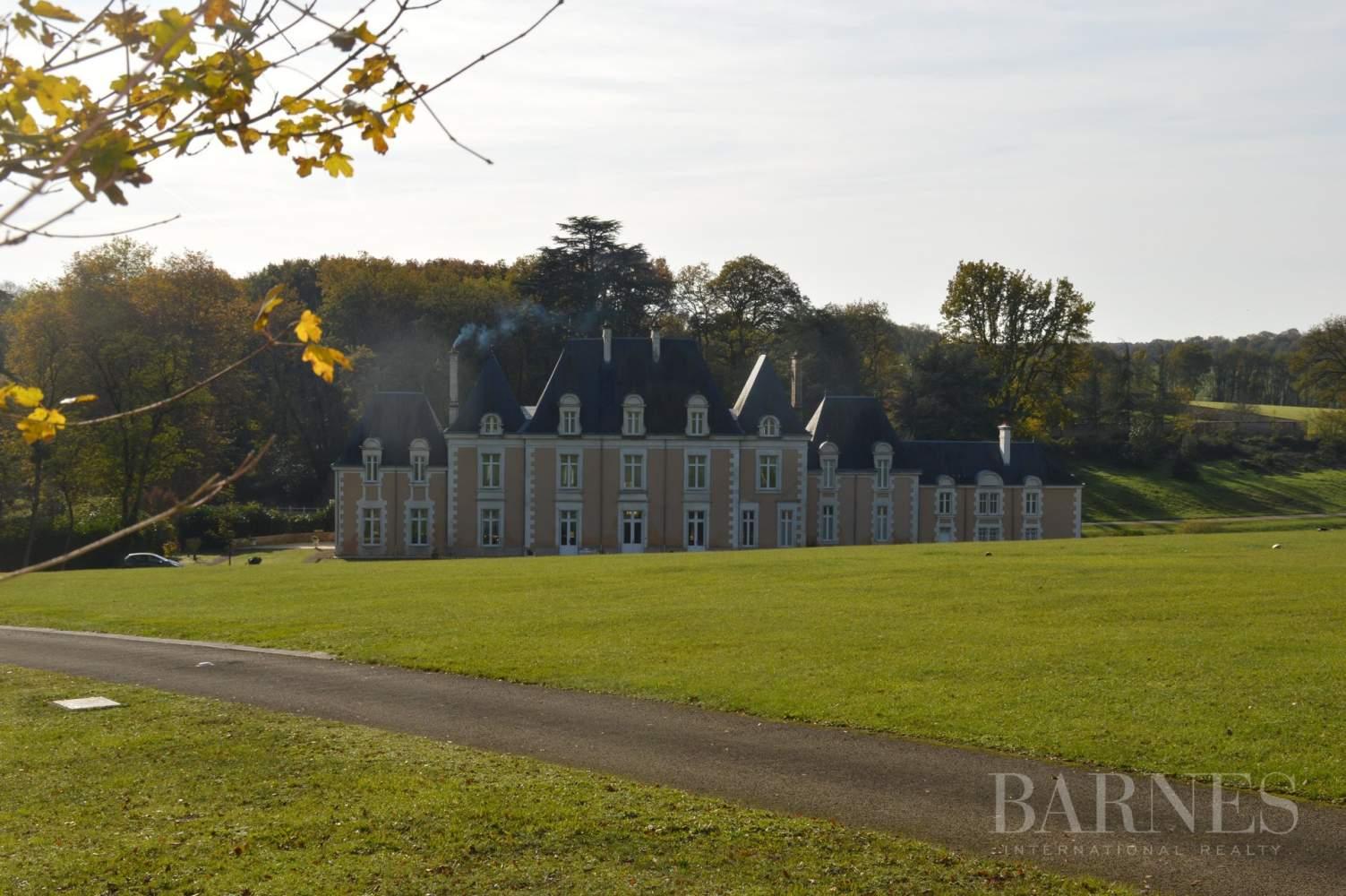 Poitiers  - Château 22 Pièces - picture 6