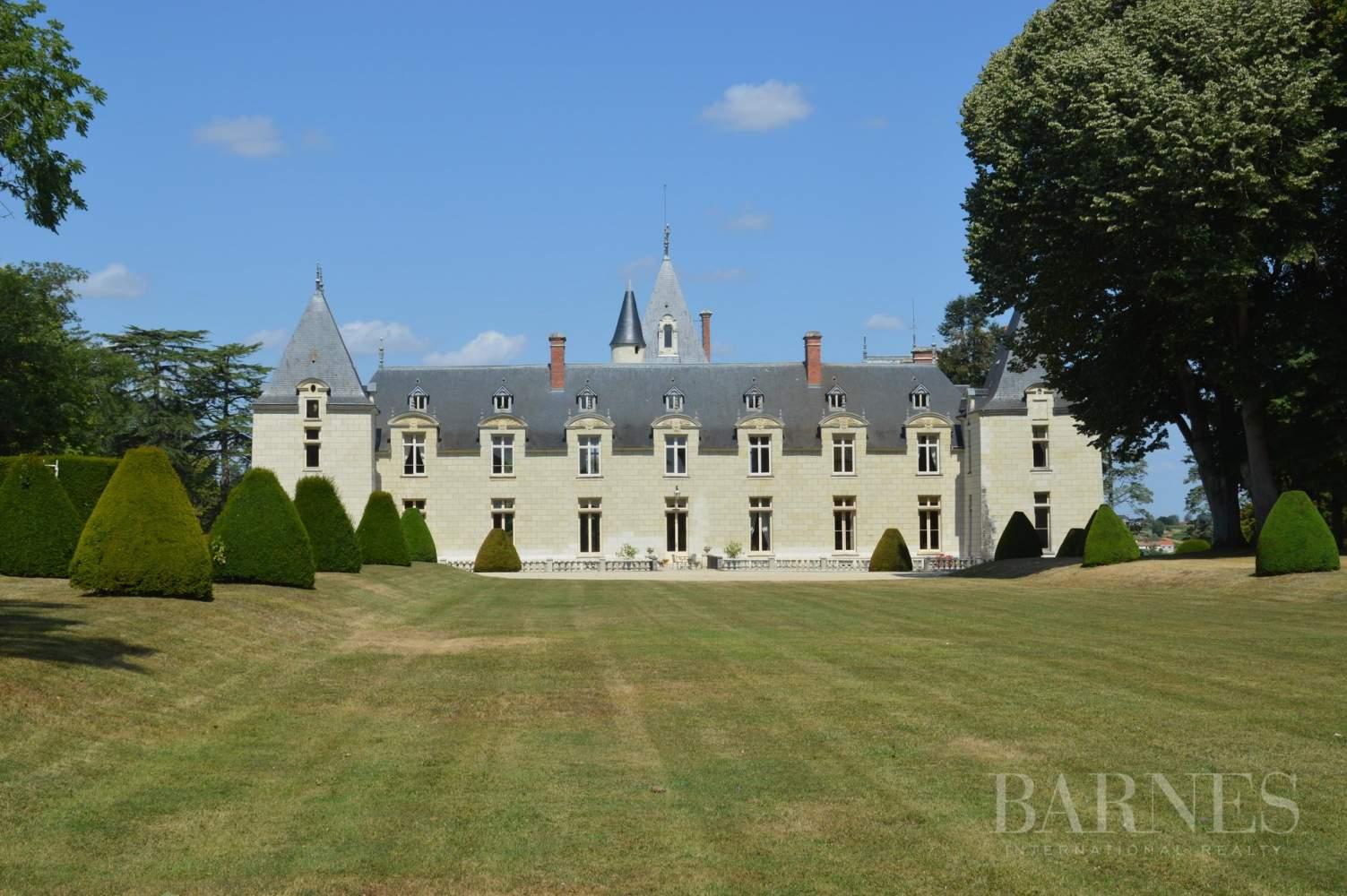 Doué-en-Anjou  - Château 30 Pièces - picture 5
